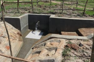 The Water Project: Makale Community, Luyingo Spring -  Spring Access Area