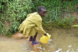 The Water Project: Mundoli Community, Pamela Atieno Spring -  Balancing