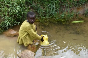 The Water Project: Mundoli Community, Pamela Atieno Spring -  Collecting Water