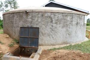 The Water Project: Mukoko Baptist Primary School -  Complete Rain Tank