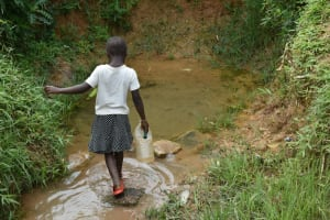 The Water Project: Mundoli Community, Pamela Atieno Spring -  A Girl Makes Her Way Into The Water Source