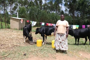 The Water Project: Luvambo Community, Timona Spring -  Gladys Gave Her Cows A Drink From The Spring