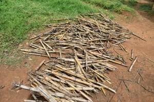 The Water Project: Mundoli Community, Pamela Atieno Spring -  Dried Firewood