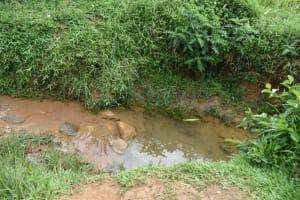 The Water Project: Mundoli Community, Pamela Atieno Spring -  Water Source Ariel Water Source