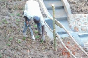 The Water Project: Maraba Community, Nambwaya Spring -  Planting Grass Above Catchment Area