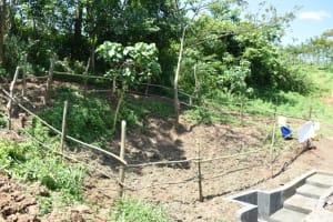 The Water Project: Maraba Community, Nambwaya Spring -  Completed Fence