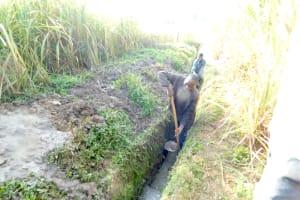 The Water Project: Maraba Community, Nambwaya Spring -  Digging The Drainage Channel