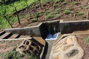 The Water Project: Mahira Community, Anunda Spring -  Protected Anunda Spring