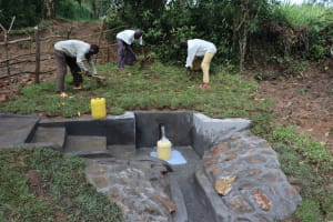 The Water Project: Nguvuli Community, Busuku Spring -  Grass Planting