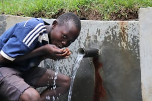 The Water Project: Nguvuli Community, Busuku Spring -  Having A Taste Of The Water