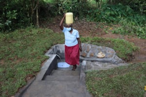 The Water Project: Nguvuli Community, Busuku Spring -  Rosemary Ready To Use Clean Water At Home