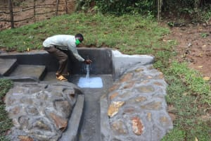 The Water Project: Nguvuli Community, Busuku Spring -  Water Celebrations