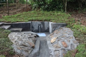 The Water Project: Nguvuli Community, Busuku Spring -  Water Flowing