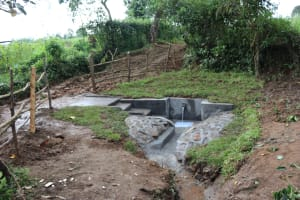 The Water Project: Nguvuli Community, Busuku Spring -  Water Flowing From Newly Completed Spring