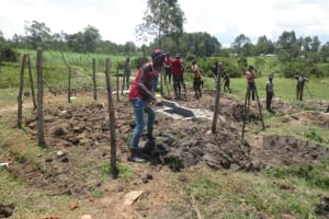 The Water Project: Makale Community, Luyingo Spring -  Fencing And Planting Grass