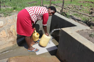 The Water Project: Makale Community, Luyingo Spring -  Collecting Water
