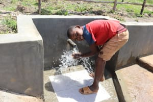 The Water Project: Makale Community, Luyingo Spring -  Water Celebrations
