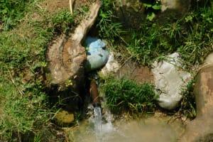 The Water Project: Muyundi Community, Magana Spring -  Water Source