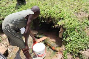The Water Project: Mukoko Community, Zebedayo Mutsotsi Spring -  Yvonne Fetching Water
