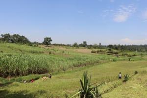 The Water Project: Mukoko Community, Zebedayo Mutsotsi Spring -  Landscape