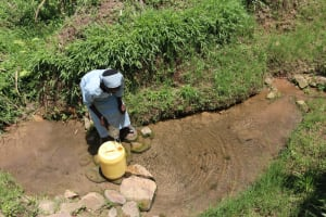 The Water Project: Shivagala Community, Alois Chiedo Spring -  Collecting Water