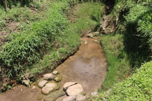 The Water Project: Shivagala Community, Alois Chiedo Spring -  Water Source