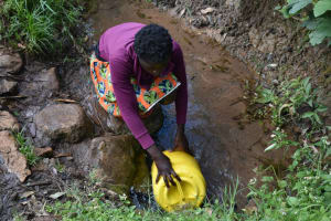 The Water Project: Malanga Community, Malava Housing Spring -  Collecting Water