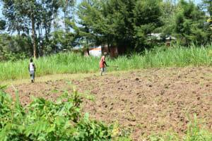 The Water Project: Malanga Community, Malava Housing Spring -  Land Preparation
