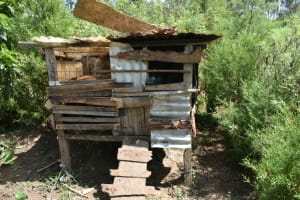 The Water Project: Malanga Community, Malava Housing Spring -  Chicken Coop