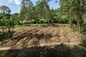The Water Project: Malanga Community, Malava Housing Spring -  Farm