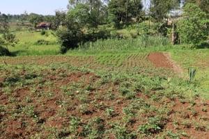 The Water Project: Shianda Community, Panyako Spring -  Community Landscape