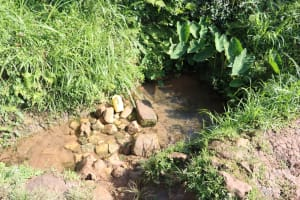 The Water Project: Shianda Community, Panyako Spring -  Water Source