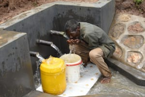 The Water Project: Mukhweso Community, Shemema Spring -  Quenching His Thirst