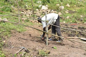 The Water Project: Bukalama Community, Wanzetse Spring -  Planting Grass Above The Catchment Area