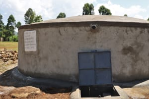 The Water Project: St. Peters Bwanga Primary School -  Complete Rain Tank