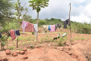 The Water Project: Kithalani Community A -  Clothesline