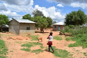 The Water Project: Lema Community -  Household Compound