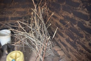 The Water Project: Lema Community -  Firewood