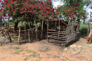 The Water Project: Lema Community A -  Animal Pen