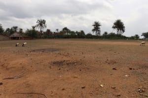 The Water Project: Kamasondo, Masome Village -  Village Football Field
