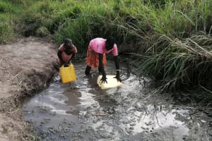 The Water Project: Nsamya Nusaff II Well -  Collecting Water At The Open Source