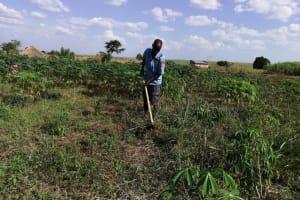 The Water Project: Nsamya Nusaff II Well -  Farming