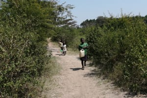The Water Project: Rwenziramire Community -  Children Walk To Collect Water