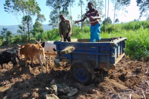 The Water Project: Machemo Community, Boaz Mukulo Spring -  Delivering Local Materials To The Spring
