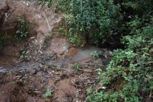 The Water Project: Kabinjari Primary School -  Open Water Source