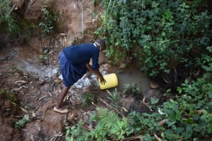 The Water Project: Kabinjari Primary School -  Student Collecting Water From An Open Source