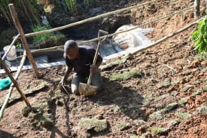 The Water Project: Musango Commnuity, Wabuti Spring -  Planting Grass Planted Above Catchment Area