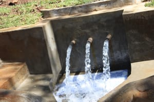 The Water Project: Shihome Community, Peter Majoni Spring -  Gushing Clean Water