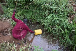 The Water Project: Givudemesi Primary School -  Collecting Water From An Open Source