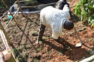 The Water Project: Musango Commnuity, Wabuti Spring -  Planting Grass Above Catchment Area